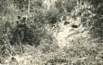 Охота на медведя 1960г