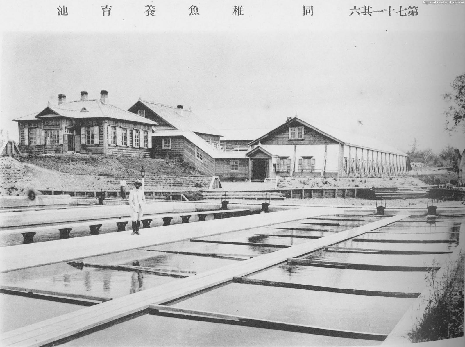 Рыборазводный завод в 1923-1924 году