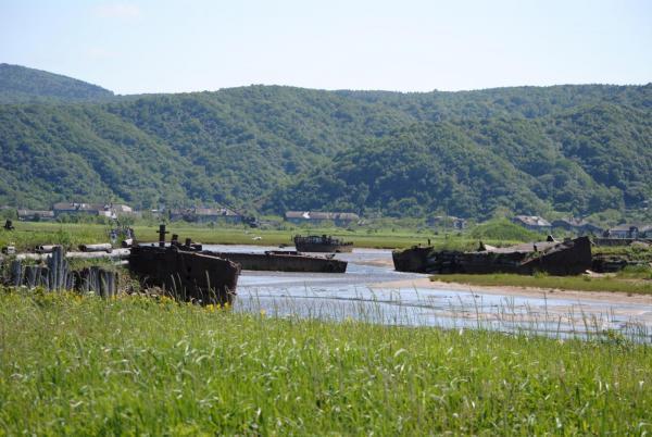 Близ старого устья реки