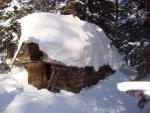 Лесной мотель.