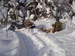 Жизнь и работа охотника - промысловика в тайге.