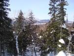Прогулки по зимнему лесу.