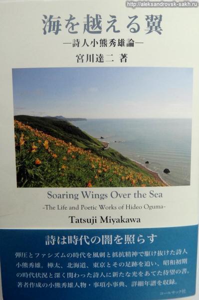 Крылья, парящие над морем