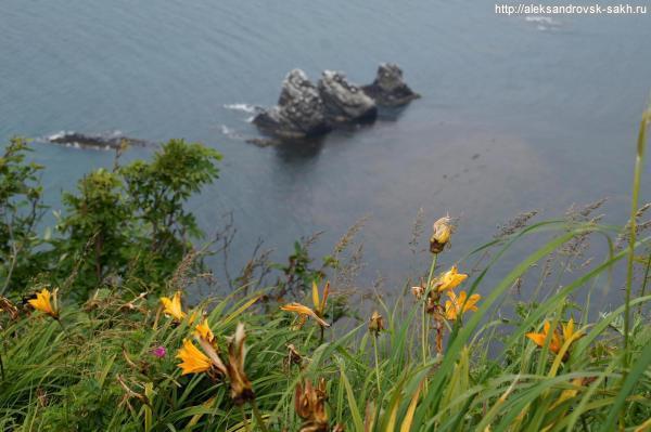 Знакомыми тропами на пике лета