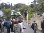 Скоро зацветет сакура... (в древней столице Камакура)