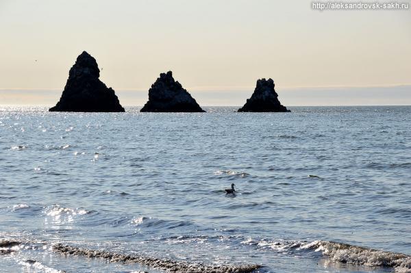 На берегу у любимых скал