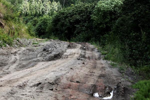 Дорога в Хоэ