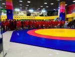 Чемпионат области по самбо